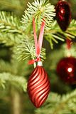Christmas ornament in the tree Stock Image