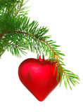 Christmas ornament on the tree. Stock Photos