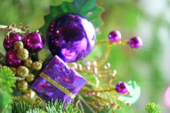 Christmas ornament in tree Royalty Free Stock Photos