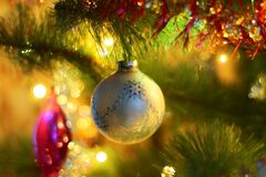 Christmas ornament on tree royalty free stock images