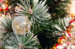 Christmas ornament on tree. Close up of white and gold ornament on green evergreen Christmas tree Royalty Free Stock Photo