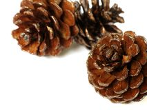 Christmas ornaments - 4. Christmas ornaments: pine cones on white background royalty free stock photo