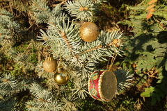 Christmas ornaments on the branch Royalty Free Stock Image
