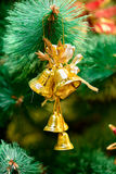 Christmas ornaments on Christmas tree. Golden bells decorations on Christmas tree. new year Royalty Free Stock Photography
