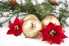 Christmas ornaments, poinsettia, pines on white. Gold glass Christmas ball ornaments with poinsettia flowers and pine bough background  on white Stock Photo