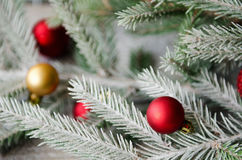 Christmas ornaments on spruce branch with snow Stock Image