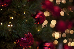 Christmas ornaments in a tree. Red Christmas ornaments hanging from a green tree with red and golden bokeh lightning in the background royalty free stock images