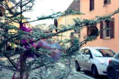 Christmas ornaments on a tree in a small village Alsace. A Christmas tree fin the street of a small village in Alsace, France Royalty Free Stock Photos