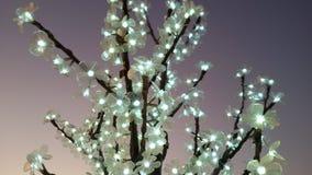 Christmas outdoor tree decoration. Outdoor Christmas tree light decoration Stock Photos