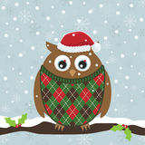 Christmas owl Stock Images