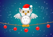 Christmas owl on a branch, with a holiday greeting Stock Photos