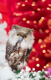 Christmas owl decorated for royalty free stock photo