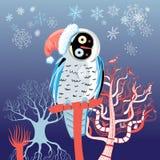 Christmas owl Royalty Free Stock Photos