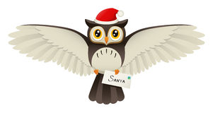 Christmas Owl Royalty Free Stock Images