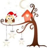 Christmas Owl Stock Photography