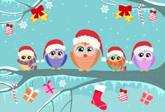 Christmas Owl Sitting on Tree Branch Decoration Royalty Free Stock Photography