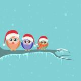 Christmas Owl Sitting on Tree Branch Winter Stock Photos