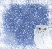 Christmas owl. Winter background with a cute owl Stock Images