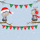 Christmas owls Royalty Free Stock Image
