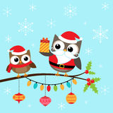 Christmas owls on branch Royalty Free Stock Images