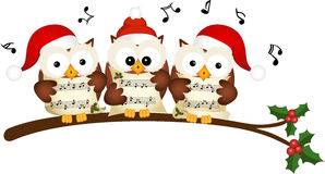 Christmas owls choir singing Stock Photo