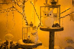 Christmas owls and lantern decorations. View of christmas owls and lantern decorations Stock Images