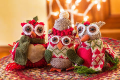 Christmas Owls Royalty Free Stock Photography