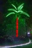 Christmas Palm Tree. A palm tree in a park, lit with Christmas lights stock photos