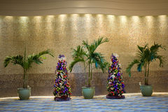 Christmas and Palm Trees Royalty Free Stock Photography