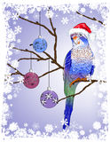 Christmas parrot with decorations on a tree branch. Vector illustration of  Christmas parrot with decorations on a tree branch Royalty Free Stock Photography
