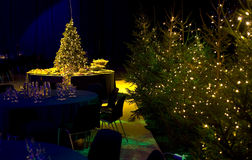 Christmas Party Arrangement. A background with a view of a Christmas party setting with an arrangement of tables & chairs and lighted trees Royalty Free Stock Photo