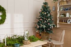Christmas party table with branches of eve in living room Stock Images