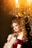 Christmas party, winter holidays woman with cat. New year girl. Royalty Free Stock Photo