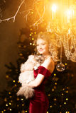 Christmas party, winter holidays woman with cat. New year girl. Stock Photography