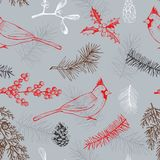 Christmas pattern with birds and Christmas plants. Vector   Royalty Free Stock Photo