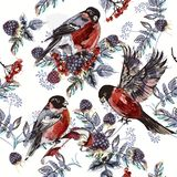Christmas pattern with rowan, berries and birds stock illustration
