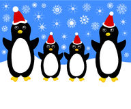 Christmas penguin family Royalty Free Stock Photography