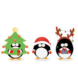 Christmas Penguin Set Stock Photos