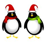Christmas Penguins. An illustration featuring a couple of Xmas penguins wearing hats and scarves Royalty Free Stock Photo