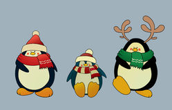 Christmas penguins Stock Image