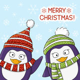 Christmas penguins on snow background Stock Image