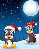 Christmas penguins in the snow Royalty Free Stock Image