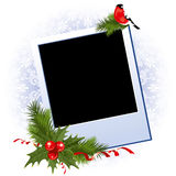 Christmas photo frame with holly berry Royalty Free Stock Images