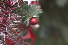 Christmas picture with the red ball. On the Christmas tree royalty free stock image