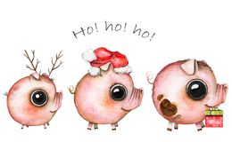Watercolor Christmas picture of a three cute pigs