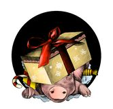 Christmas pig`s head in a festive cardboard box with a bow on his head climbs out of the hole. The front part of the two-sided pattern, sketch vector graphics stock illustration