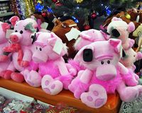 Christmas pigs under the tree royalty free stock photos