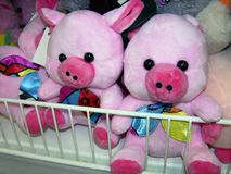 Christmas pigs in the store royalty free stock image