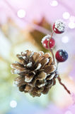 Christmas Pine Cone. A seasonal christmas pine cone with berries Stock Images