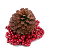 Christmas pine-cone. Pine cone and red Christmas beads, isolated Royalty Free Stock Images